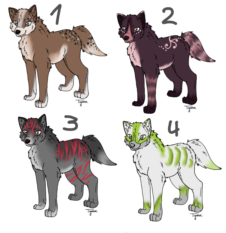 Wolf point adoptables 5 by anouki morgenstern on deviantart for Jenni wolf