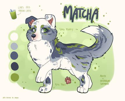 Matcha the Doggo Flatsale [OPEN]