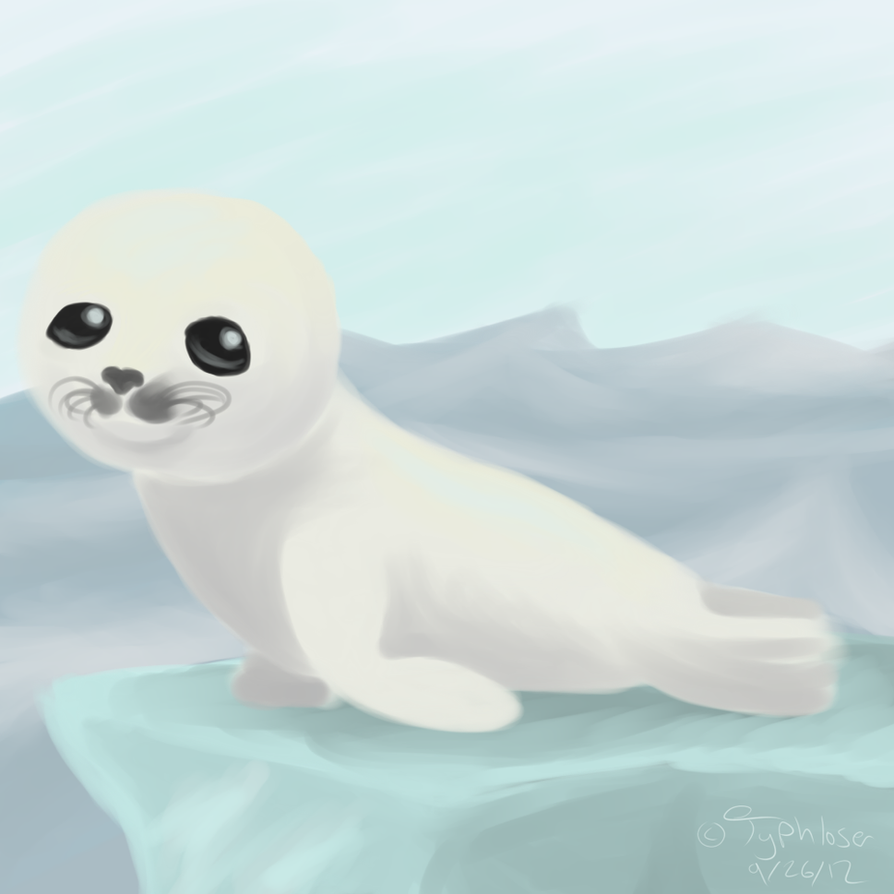 Baby Harp Seal by Typhloser on DeviantArt Baby Arctic Seal Drawing