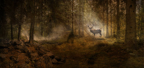 Deer in the Forest by edvardmunch