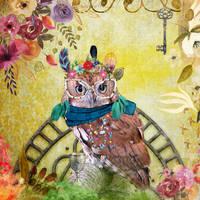 Eccentric owl by Divs-M