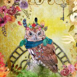 Eccentric owl