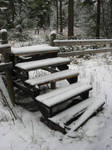 Winter Stock 2007 07