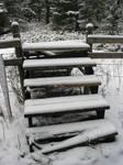 Winter Stock 2007 08