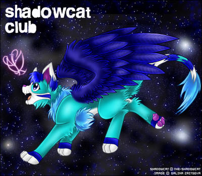 ShadowCat ID by Bebi-Vegeta