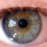 Eye by Wafflite