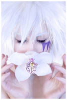 White Orchid by selfOblivion