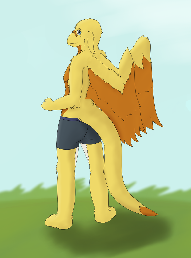 Glorious Gryph by dalnariarna