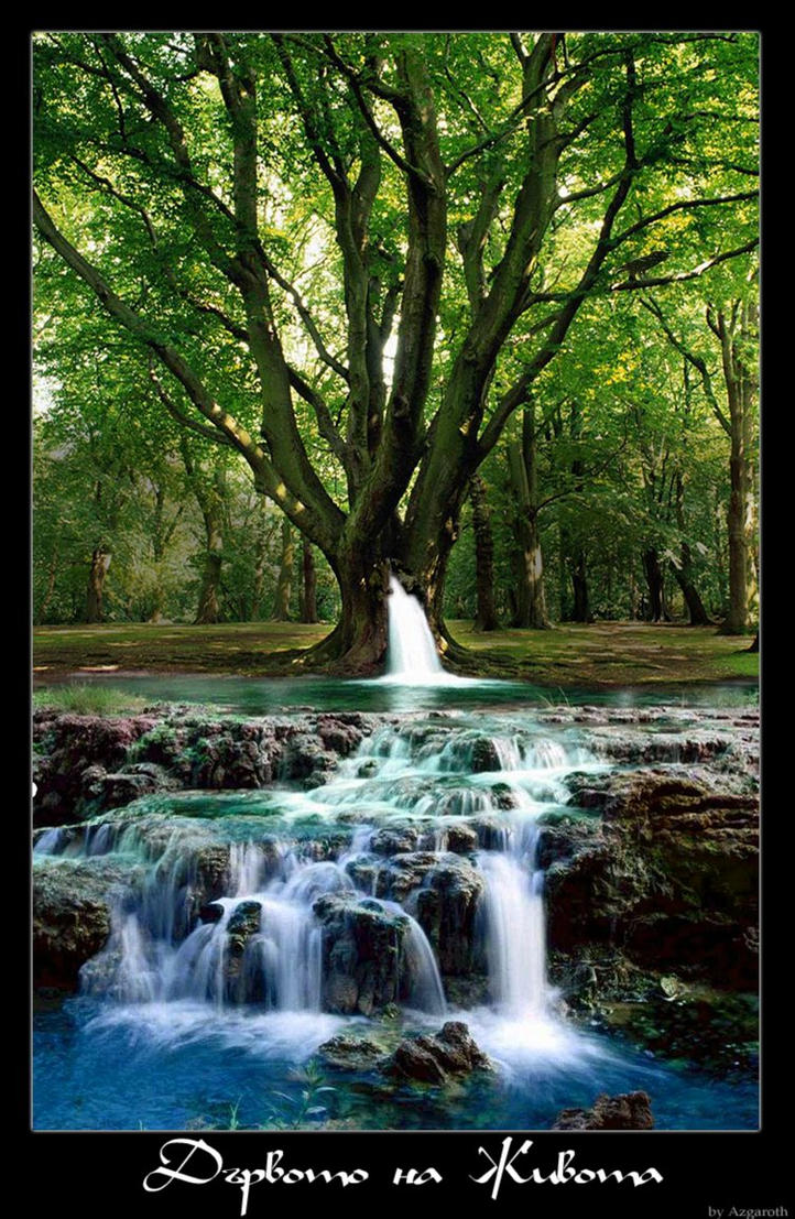 The Tree Of Life by azgaroth