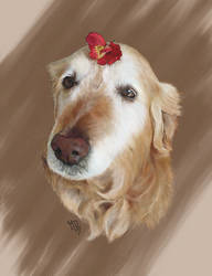 Tika's Digital Portrait by Miss-Blurry