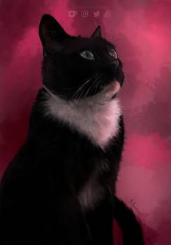 Portrait of Machin