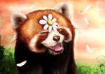 Smiley Red Panda