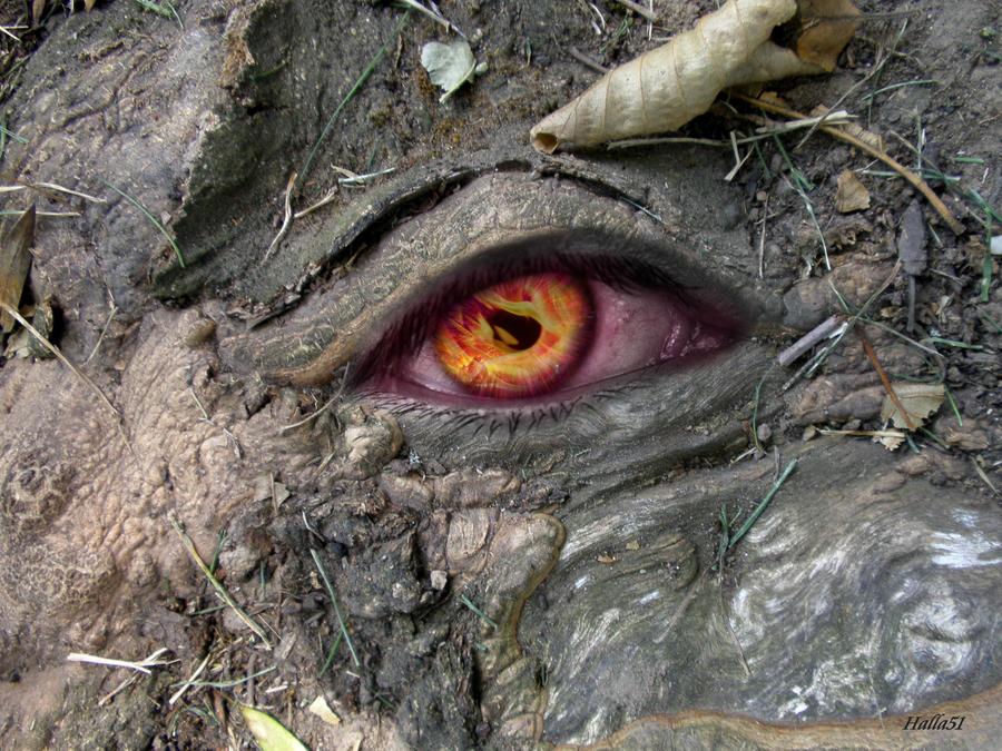 Serial2305 Tree eye by Halla51