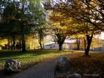 autumn 154 by Halla51