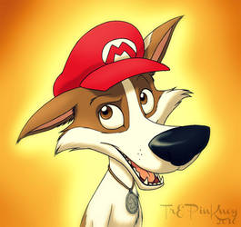 It'sa Me, Strelka by Burning-Wolf-Promise