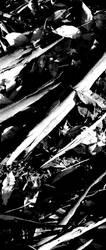 Fallen feathers by aElien