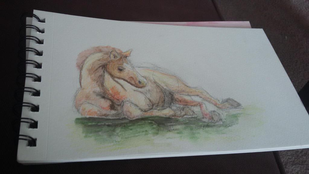 Foal by Sydnut
