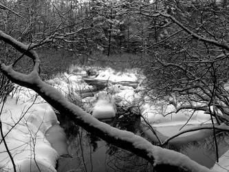snow swamp by gwystal