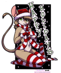 Playmouse Xmas 2011 colored by DACantero