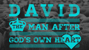David WIP
