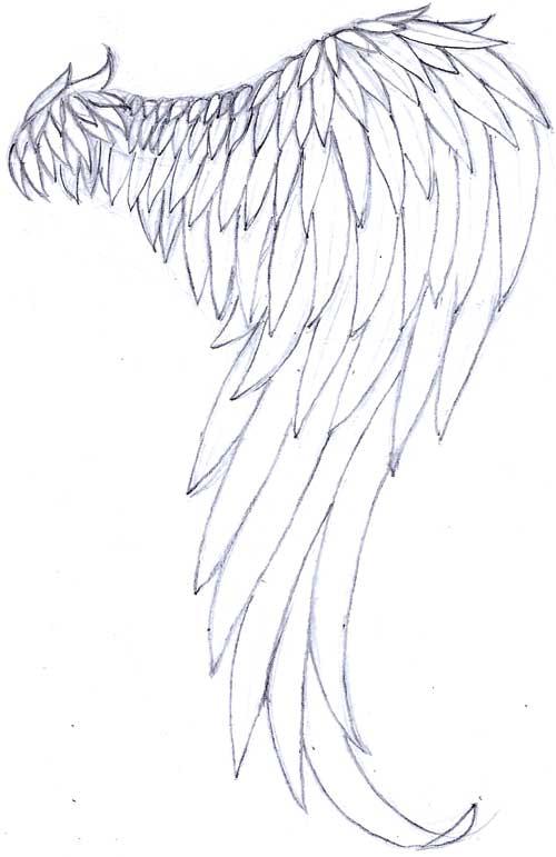 Line Drawing Wings : Single angel wing by s ndm n on deviantart