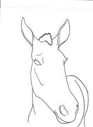 Mule Head by Allicorn