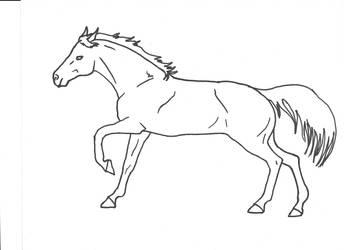 Horse Run by Allicorn