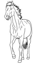 Horse with mouth open Lineart PUBLIC DOMAIN