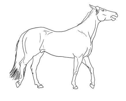Horse walking mouth open Lines PUBLIC DOMAIN