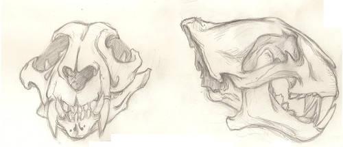 Tiger Skulls by ArsenicForBreakfast
