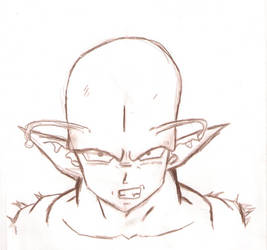 Piccolo Pencil Drawing