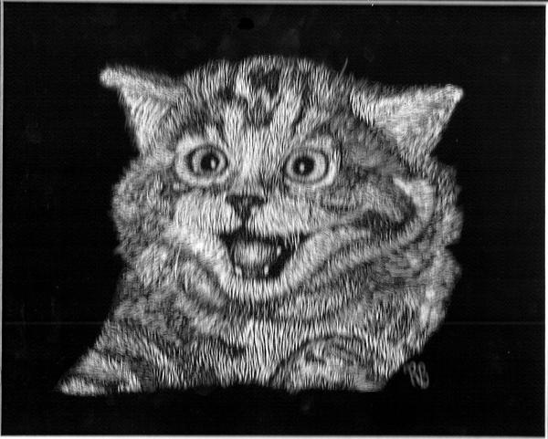 Scratch Art Cat By ShadowChaos24