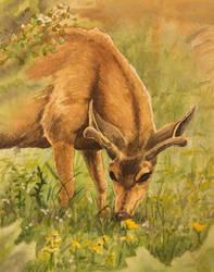 Deer Eating by tadamson