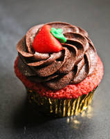Strawberry Chocolate Cupcake by FunTroon