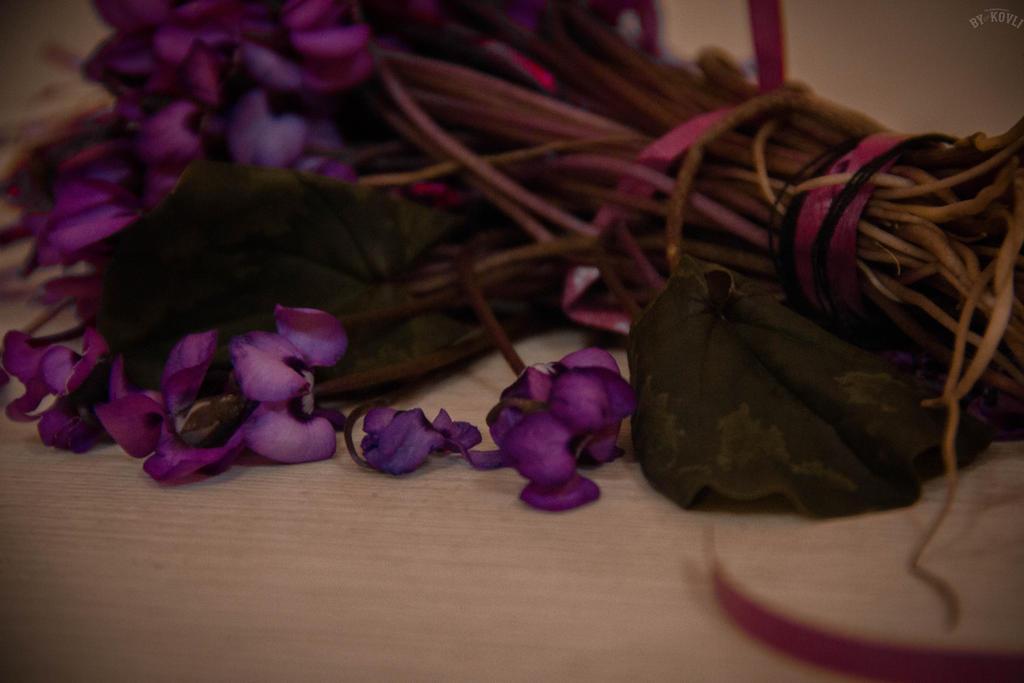 Flowers by KovLi