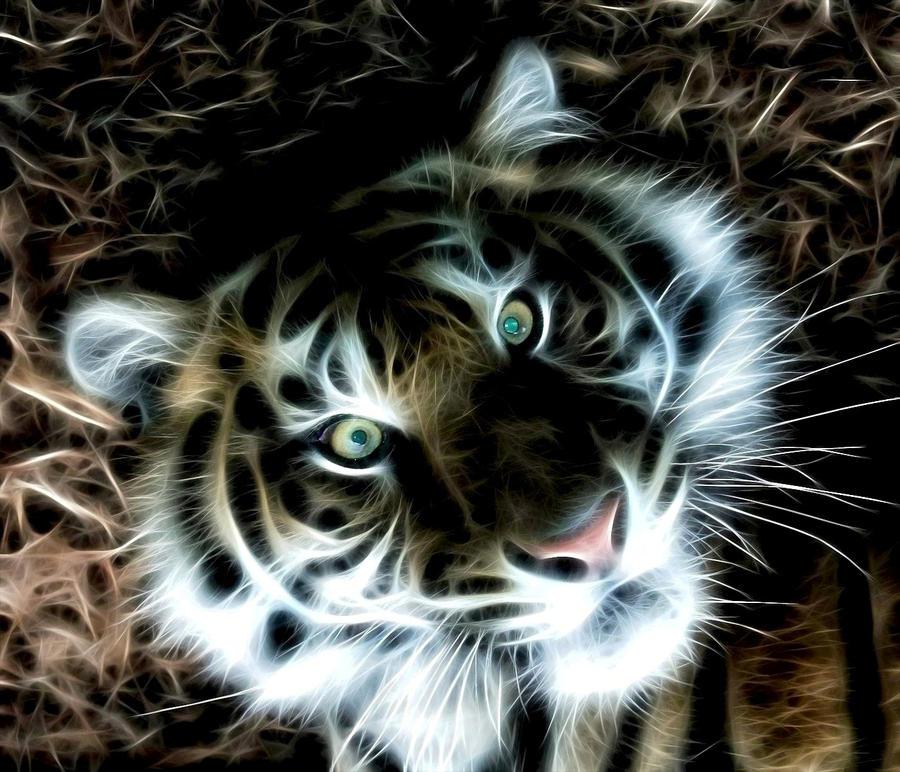 tiger fractal cats e - photo #7