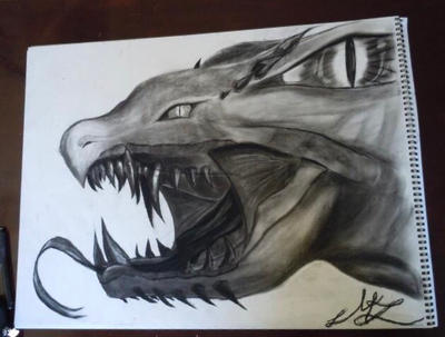 Playing with charcoal by doodle1314