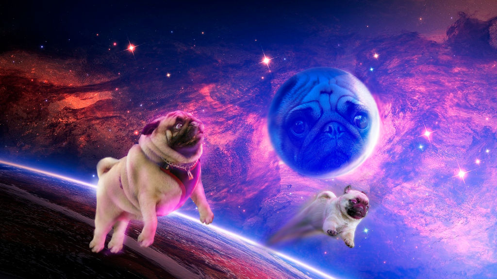 Space pug wallpaper 1920x1080 by Redysome ...