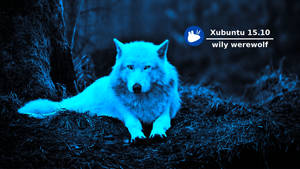 Xubuntu 15.10 wily werewolf