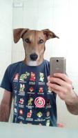 Dog human