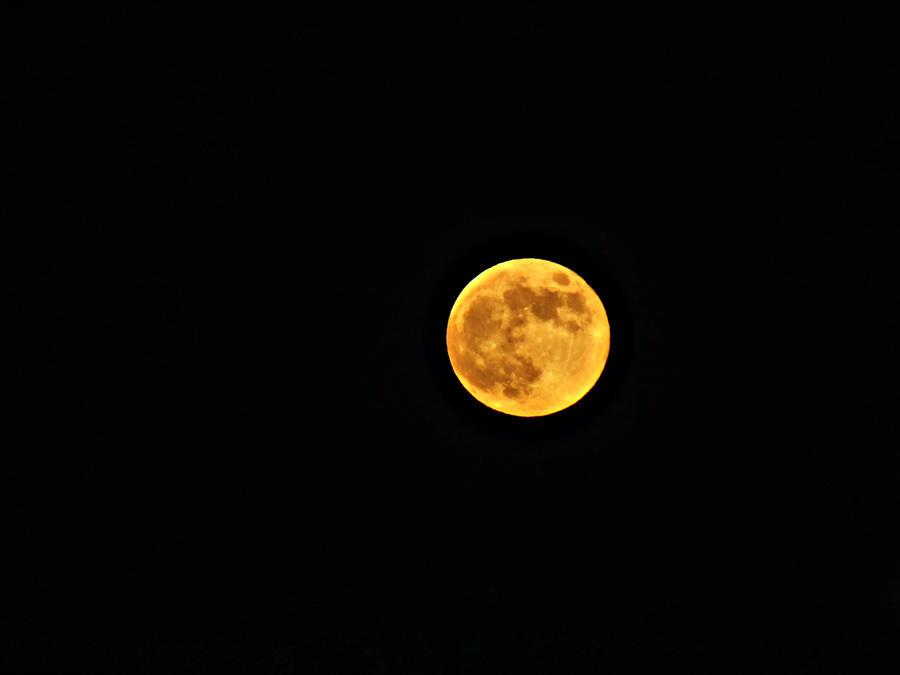 Full Moon by Spiritomb1231