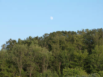 A day moon