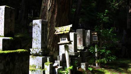 Japan - Old Cemetery