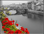 Florence by Marcello-Paoli