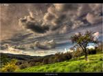 Tuscany_132