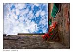 Valagnesi_Looking Up