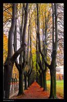 Autumn_13 by Marcello-Paoli