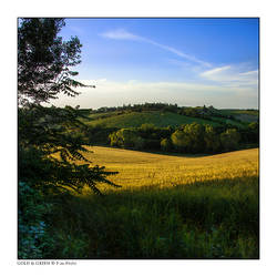 Gold and Green by Marcello-Paoli