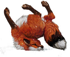 Fox Tumbles