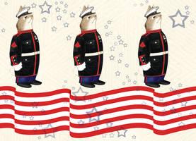 Velveteen Marine Fabric